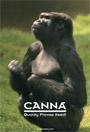 CANNA folleto general
