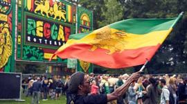 CANNA love op Reggae Festival Rotterdam