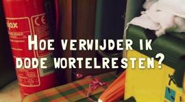 Afl. 5 Hoe verwijder ik dode wortelresten? - Tips & Tricks door Bart