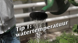 Afl. 1 Watertemperatuur - Tips & Tricks door Kees