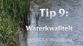 Afl. 9 Waterkwaliteit - Tips & Tricks door Kees